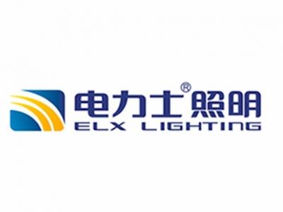 【报名项目】广东电力士照明科技有限公司