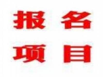 【报名项目】上海金点子智能科技有限公司